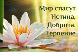Мир Спасут Истина Доброта Терпение